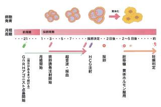 排卵誘発法.jpg